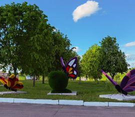 В Орше появились гигантские бабочки