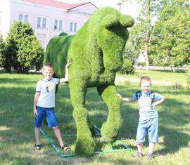 Скульптуры садово-паркового топиари украсили парк