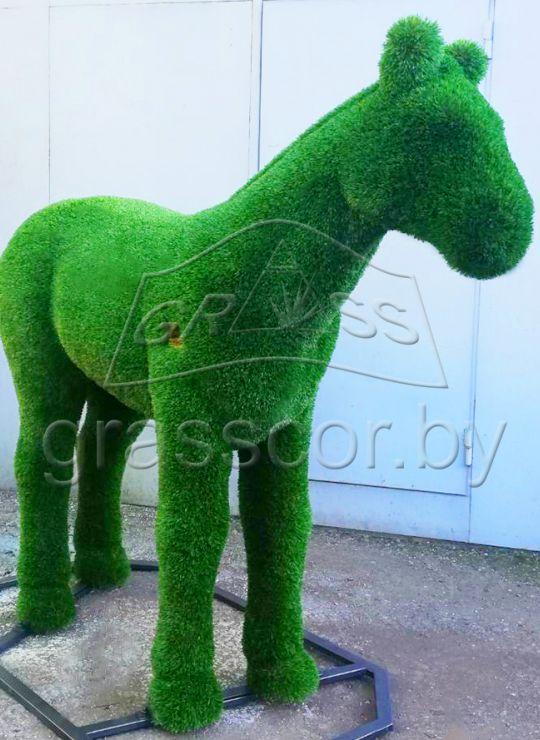 Лошадь маленькая